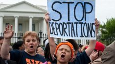 Últimas noticias de inmigración en Estados Unidos