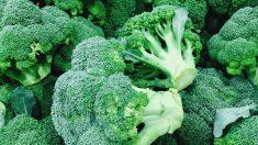 Más razones para consumir brócoli
