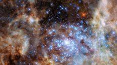 El Hubble descubre el mayor grupo de estrellas gigantes