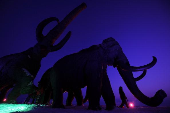 Encuentros con bestias prehistóricas, ¿hechos reales o sugestión colectiva? (Foto: NATALIA KOLESNIKOVA/AFP/Getty Images)