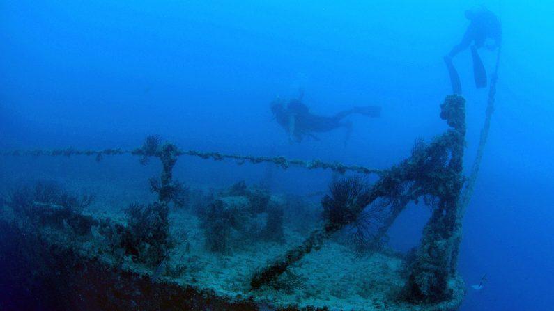 Buques naufragados ayudarán a predecir huracanes con tres veces más precisión.  (FOTO: Fraser Nivens/Florida Keys News Bureau via Getty Images)