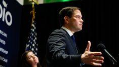 Rubio cuestiona a EEUU manejo de crisis migratoria de cubanos en Centroamérica