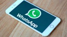 WhatsApp estaría preparando versión nativa para Windows y OS X