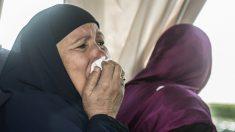 """Noticias internacionales de hoy, lo más destacado: """"Encontramos los restos"""", dice el vicepresidente de EgyptAir"""