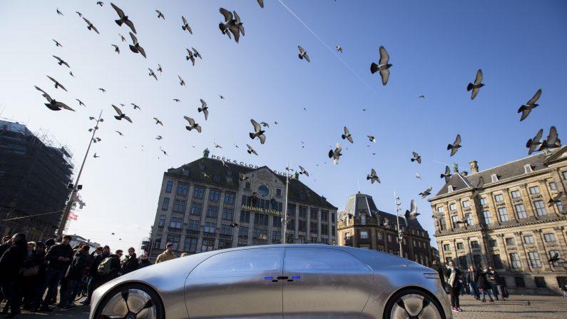 (Foto: BART MAAT/AFP/Getty Images)
