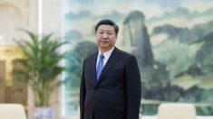 Xi Jinping da a entender un cambio de postura del régimen hacia Falun Gong
