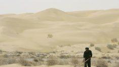 La desertización de China está causando problemas a lo largo de Asia