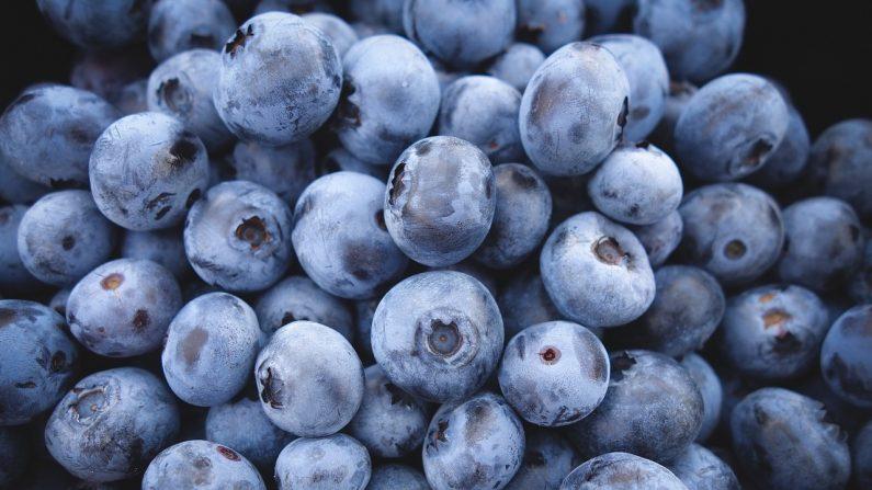 Se sabe que los alimentos ricos en polifenoles mejoran la salud del cerebro, y las bayas de açaí contienen muchos polifenoles y antioxidantes. (Pixabay)