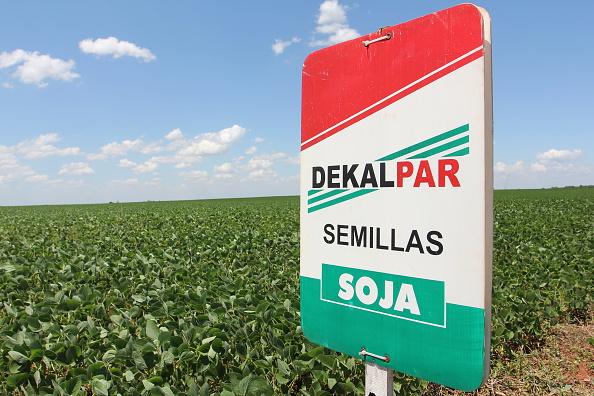 Publicidad de Dekalpar, representante de Bayer CropScience y Monsanto en Paraguay  (Foto: Markus Matzel/ullstein bild via Getty Images)