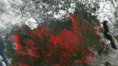 NASA capta múltiples incendios en África Central
