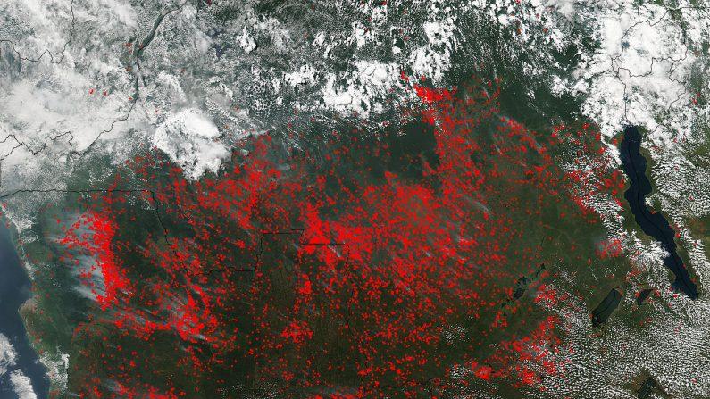 Múltiples focos de incendios en África Central captados por la NASA. (NASA)