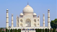 Desechos de insectos están dañando el Taj Mahal
