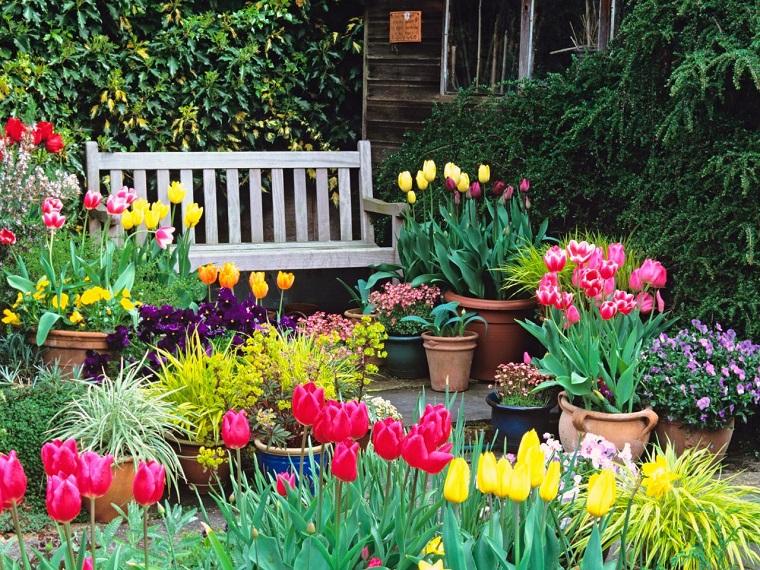Las 5 mejores plantas para exterior que lucir n hermosas for Plantas aromaticas exterior todo el ano