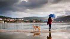 México: Prevén tormentas intensas en Puebla, Veracruz, Chiapas y Tabasco