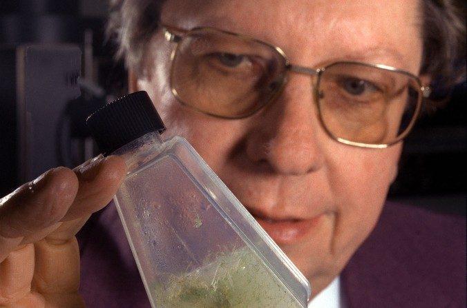 El astrobiólogo de la NASA Richard Hoover dijo que encontró lo que podría ser evidencia de vida extraterrestre. (NASA)