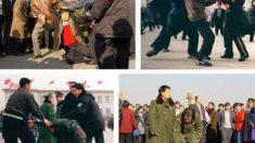 Intentando detener la persecución a Falun Gong en sus comienzos