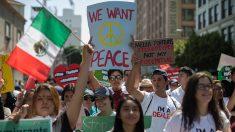 EE.UU: Servicio de inmigración realizó 331 arrestos en el último mes