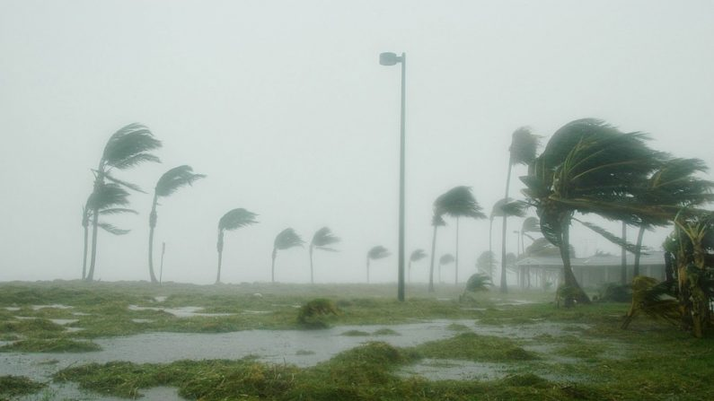 Fenómeno La Niña afectaría a México con clima severo a finales del año (Foto: Pixabay)