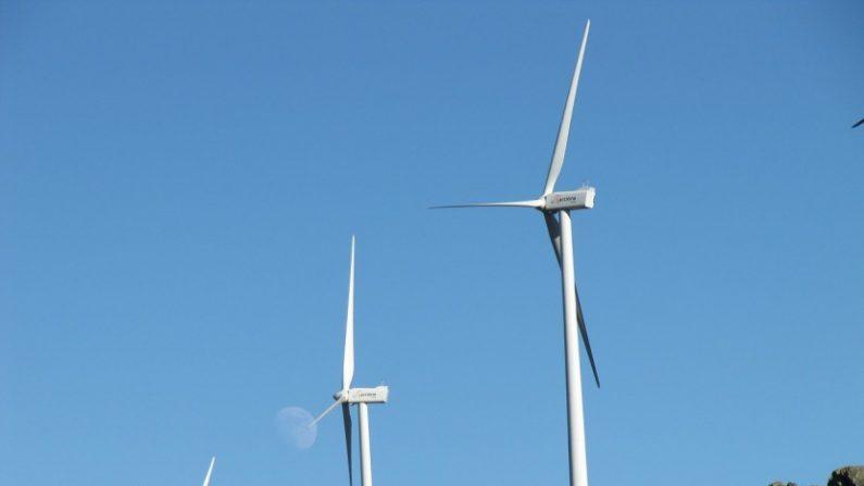 Energía eólica, molinos de viento. (CC0 Pixabay)
