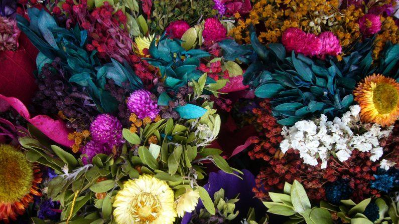 flores secas decoración y arte. (Pixabay.com)