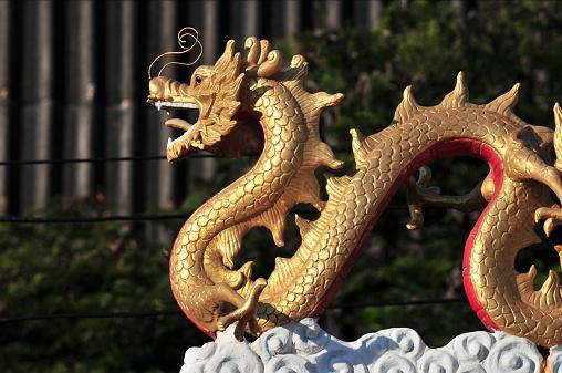El dragón es una criatura hermosa, enérgica y confidente que sin temor encara los desafíos. La generosidad de los dragones atrae a muchos amigos, pero su arrogancia impide su relación con los demás. (Foto: Getty Images)