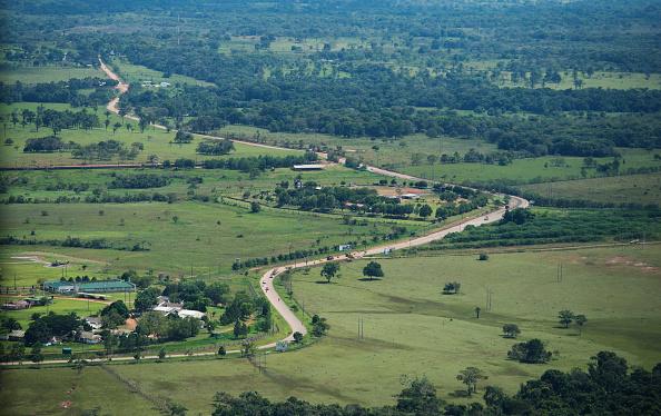 Colombia ha perdido más de 2.4 millones de hectáreas de bosque (foto Michael Gottschalk/getty images)