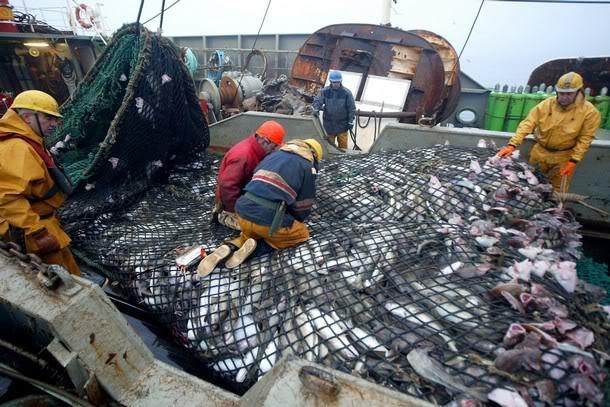 Alertan sobre impactos ambientales irreversibles por instalación de puerto pesquero chino en Uruguay