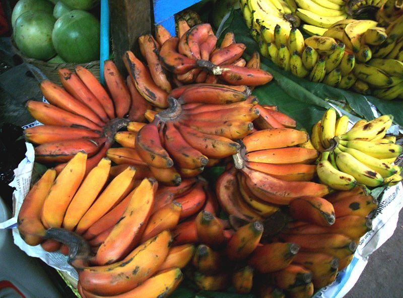 Banana roja de Guatenala. (Wikimedia Commons)