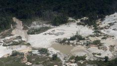Venezuela: Crisis y minería ilegal impulsan resurgencia de malaria