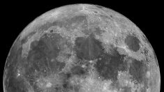 La luna llena tiene un efecto de seis días, confirman los astrónomos