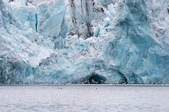NASA reporta segundo mayor deshielo del Ártico desde 2007 (foto Wolfgang Kaehler/LightRocket via Getty Images)