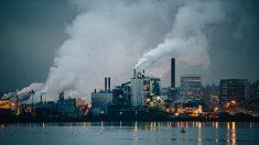 Más de 1,7 millones de niños mueren por causas medioambientales