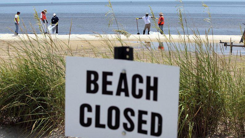 Trabajadores limpian la orilla de Deepwater Horizon en el Golfo de Mexico en Waveland, Mississippi. (Joe Raedle/Getty Images)