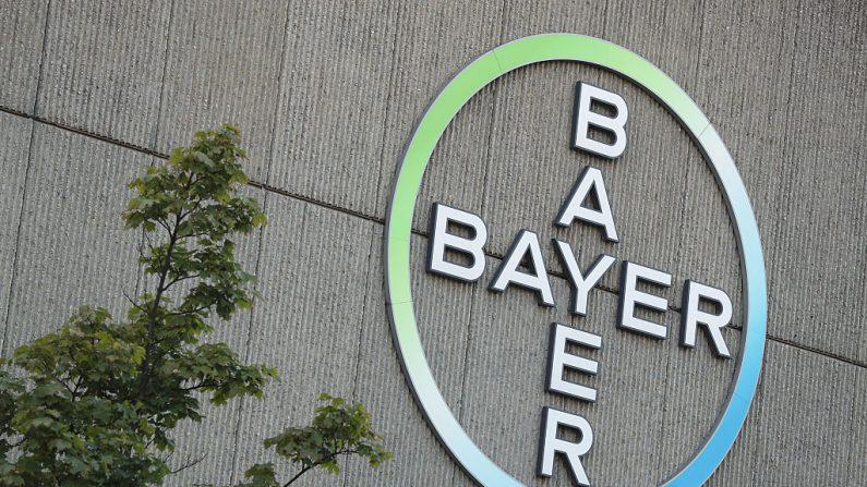 Monsanto – Bayer: los transgénicos más cuestionados