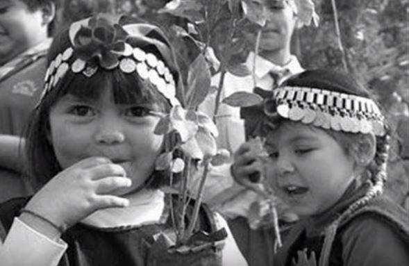 Niños mapuches ( Imagen de Video)