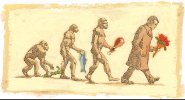 Teoría de la evolución presentada por Darwin. Imagen de simios y algo parecido a un ser humano. (The Kansas City Star/MCT via Getty Images)