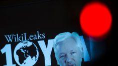 Estados Unidos influyó en decisión de Ecuador contra Assange