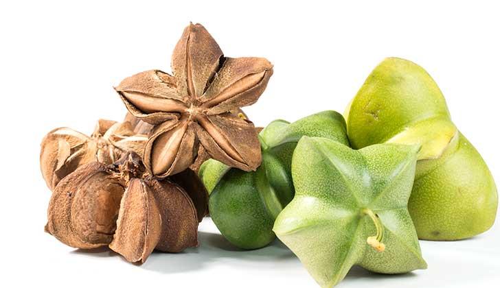 Beneficios para el organismo de consumir sacha inchi. Foto: Pixabay