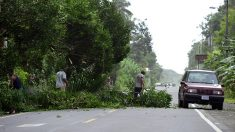 EE.UU. y Panamá harán labores de rescate por huracán Otto