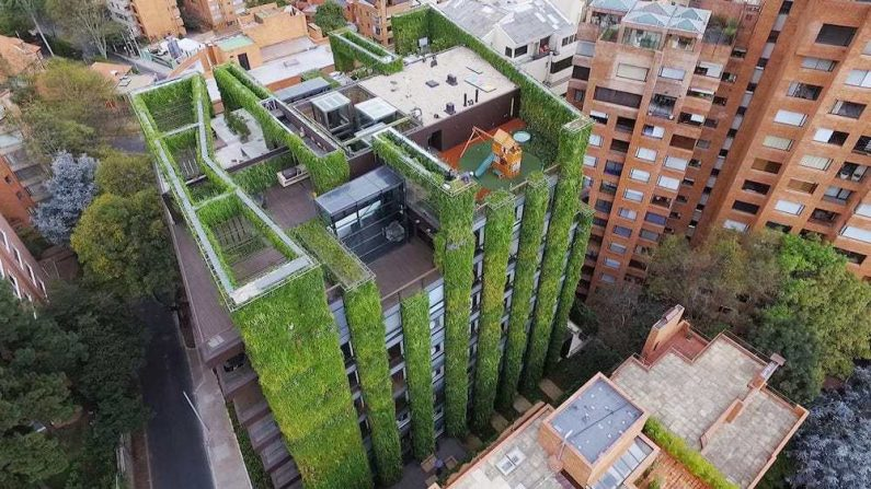 El jardín vertical más grande del mundo está en Colombia