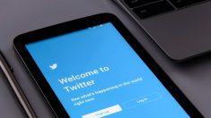 Twitter implementa soporte para GIFs en Windows 10