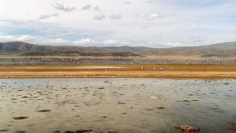 Lago Popoó, Bolivia. (Wikipedia)