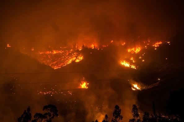 Foto tomada durante el incendio forestal en Vichuquén, a 283 km al sur de Santiago de Chile, el 24 de enero de 2017. (MARTIN BERNETTI / AFP / Getty Images)