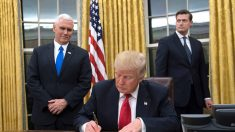 Primera semana de Trump como presidente de Estados Unidos: puestos de trabajo y seguridad es la prioridad