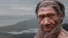 ADN del hombre denisovo afirma que no hay evolución de la especie humana