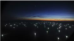 """Una """"ciudad flotante"""" de barcos pesqueros chinos acecha el Mar Argentino para depredar sus recursos"""