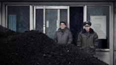¿Por qué China frenó todas las importaciones de carbón desde Corea del Norte?