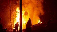 Incendios forestales en Chile consumieron 467.000 hectáreas
