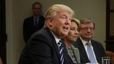 Trump asistirá a cumbre de la OTAN en mayo