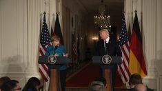 Trump y Merkel destacan cooperación bilateral tras reunión privada